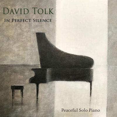 دانلود آلبوم موسیقی In Perfect Silence توسط David Tolk