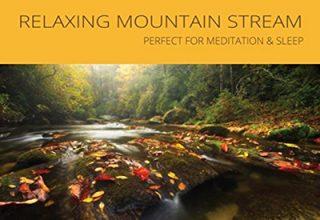 دانلود آلبوم موسیقیRelaxing Mountain Stream توسط Ryan Judd