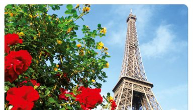 دانلود آلبوم موسیقی Afternoon in Paris توسط Dan Newton