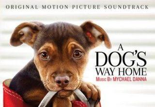 دانلود موسیقی متن فیلم A Dog's Way Home