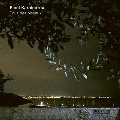 دانلود موسیقی متن فیلم Tous des oiseaux / Bomb, A Love Story