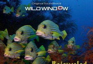 دانلود موسیقی متن فیلم Wild Window: Bejeweled Fishes