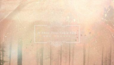 دانلود آلبوم موسیقی Red Forest توسط If These Trees Could Talk