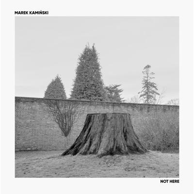 دانلود آلبوم موسیقی Not Here توسط Marek Kamiński