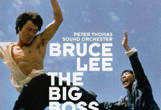 دانلود موسیقی متن فیلم The Big Boss