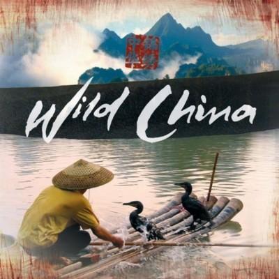 دانلود موسیقی متن سریال Wild China