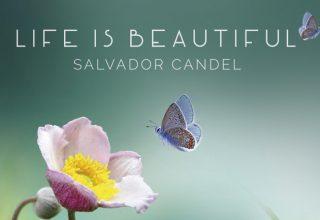 دانلود آلبوم موسیقی Life is Beautifulتوسط Salvador Candel