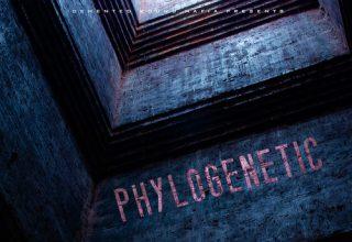 دانلود آلبوم موسیقی Phylogenetic توسط Demented Sound Mafia