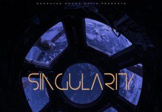 دانلود آلبوم موسیقی Singularity توسط Demented Sound Mafia