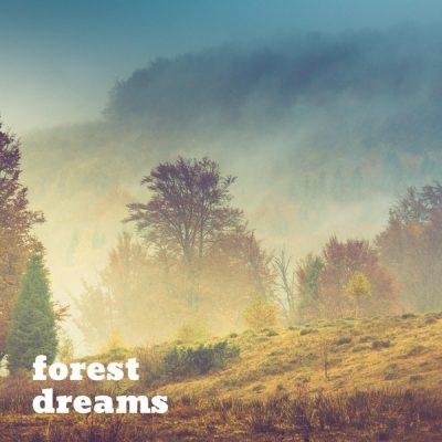 دانلود قطعه موسیقی Succession توسط Forest Dreams