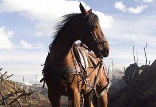 دانلود موسیقی متن فیلم War Horse