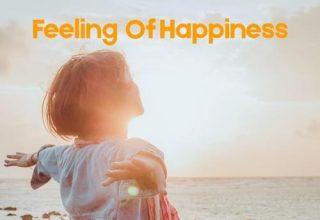 دانلود آلبوم موسیقی Feeling of Happiness توسط UniqueSound