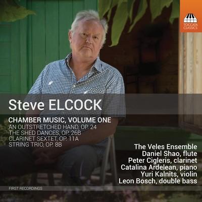دانلود موسیقی متن فیلم Chamber Music, Vol. 1