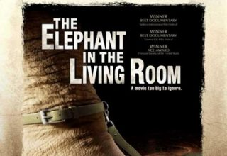 دانلود موسیقی متن فیلم The Elephant in the Living Room