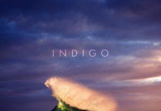 دانلود آلبوم موسیقی Indigo توسط Tony Anderson