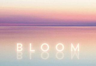 دانلود قطعه موسیقی Bloom توسط Tony Anderson