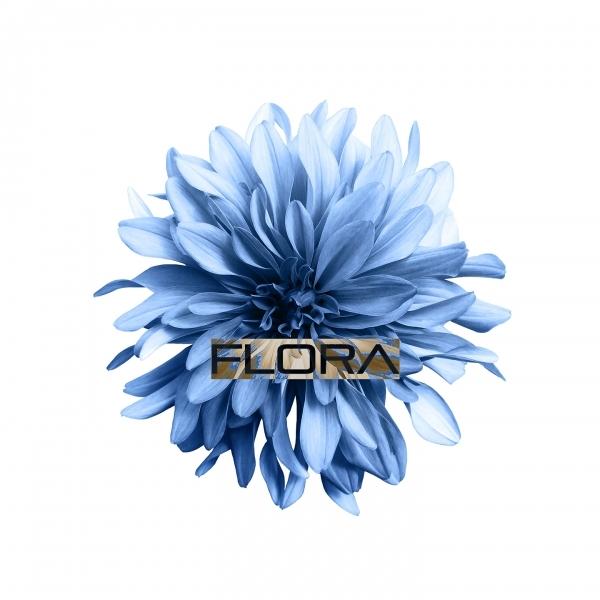 دانلود آلبوم موسیقی Flora توسط Peter Ries