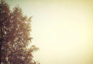 دانلود آلبوم موسیقی Autumn Echo توسط Peter Ries