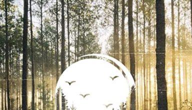 دانلود قطعه موسیقی Backcountry توسط Dear Gravity