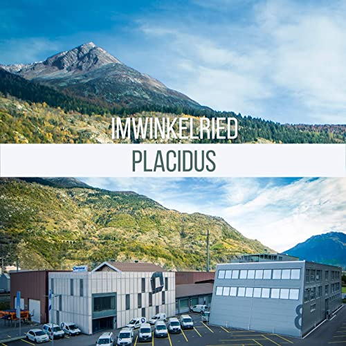 دانلود قطعه موسیقی Placidus توسط Peter Ries