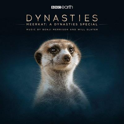 دانلود موسیقی متن سریال Meerkat: A Dynasties Special