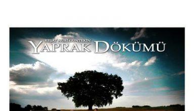 دانلود موسیقی متن سریال Yaprak Dökümü