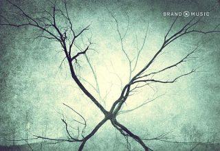 دانلود آلبوم موسیقی Incubate توسط Brand X Music