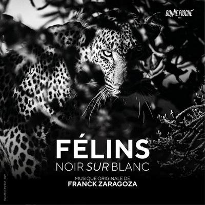 دانلود موسیقی متن فیلم Félins noir sur blanc