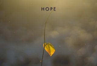 دانلود آلبوم موسیقی Hope توسط Tiffany Hobson