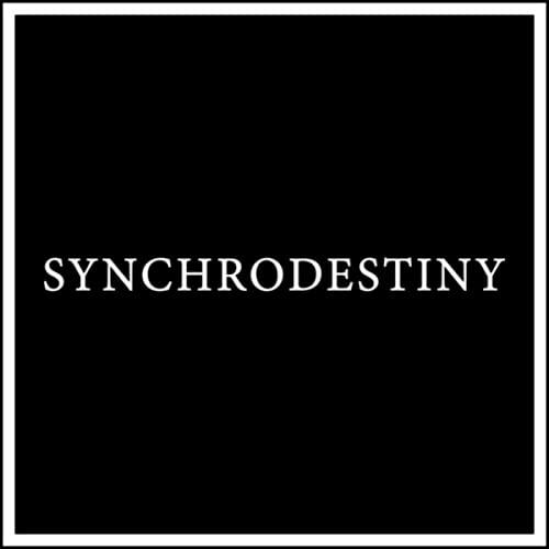دانلود قطعه موسیقی Synchrodestiny توسط Maneli Jamal