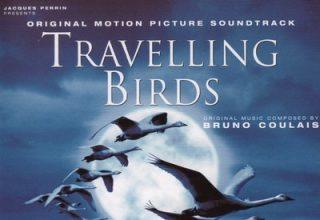 دانلود موسیقی متن فیلم Travelling Birds – توسط Bruno Coulais & VA