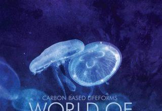 دانلود آلبوم موسیقی World Of Sleepers توسط Carbon Based Lifeforms